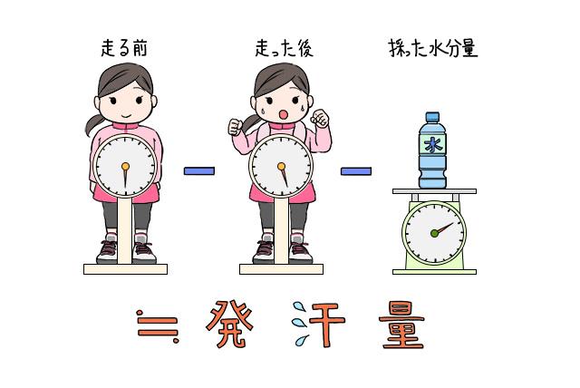 ランニング前の体重-ランニング後の体重-補給した水分量≒発汗量