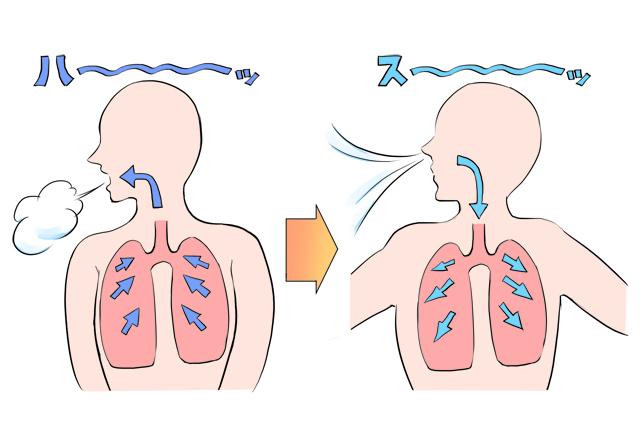 ランニング時は深い呼吸で酸素を効率よく取り込む