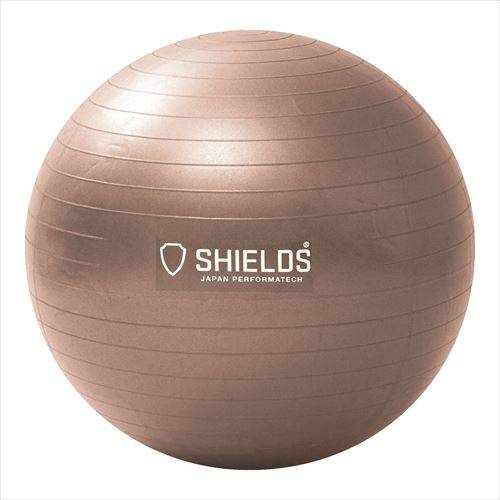 SHIELDS(シールズ)「ジムボール65」